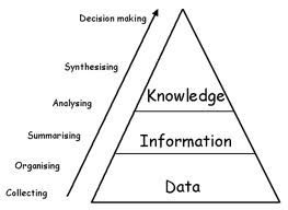 a look at the causes of knowledge loss in an organization The partner organization was a large australian government department, which  faced the threat of knowledge loss caused by its ageing workforce the sample.